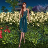 EVOLVE OPEN DRESS_009